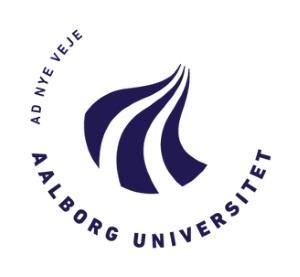 Aalborg_Universitet_skrivekursus_skrivekurser_flowskrivning_for_ph.d.